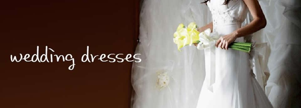 How to clean a wedding dress yourself wedding prestige cleaners for those who demand the best wedding dress solutioingenieria Choice Image